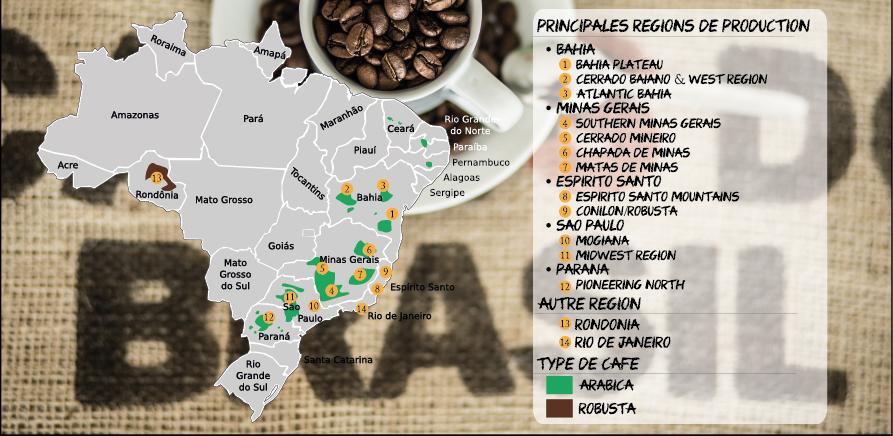 Carte des régions de production de café au Brésil